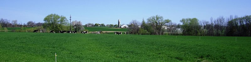 Stiles Dairy Farm